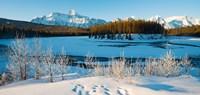 Frozen river with mountain range in the background, Mt Fryatt, Athabaska River, Jasper National Park, Alberta, Canada Fine-Art Print