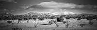 High desert plains landscape with snowcapped Sangre de Cristo Mountains in the background, New Mexico (black and white) Fine-Art Print