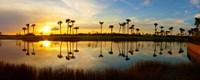 Reflection of trees in water at sunset, Lake Worth, Palm Beach County, Florida, USA Fine-Art Print