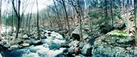 River flowing through a valley, Hudson Valley, New York State Fine-Art Print