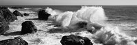 Waves breaking on the coast, Santa Cruz, California (black and white) Fine-Art Print