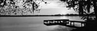 Lake Whippoorwill, Sunrise, Florida (black & white) Fine-Art Print