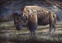 Spirit Of The Plains (Bison) Fine-Art Print