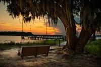 Savannah Sunset Fine-Art Print
