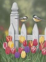 Chickadees And Tulips Fine-Art Print