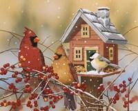 Winter Birds Buffet Fine-Art Print