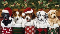 Christmas Puppies Fine-Art Print