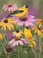 Golden Finches Fine-Art Print