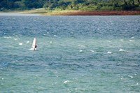 Wind surfer in a lake, Arenal Lake, Guanacaste, Costa Rica Fine-Art Print