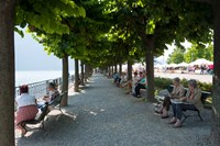 People sitting on benches among trees at lakeshore, Lake Como, Cernobbio, Lombardy, Italy Fine-Art Print