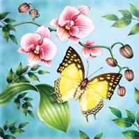 Nawab Fine-Art Print