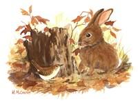 Wren & Bunny Fine-Art Print