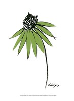 Graphic Cone Flower I Fine-Art Print
