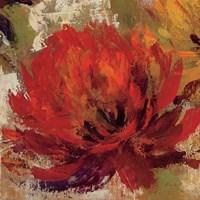 Fiery Dahlias II Fine-Art Print