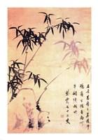 Sin Wi, Bamboos Fine-Art Print