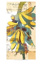 Cortez Gold I Fine-Art Print