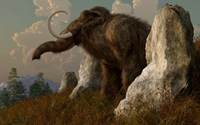 A mammoth standing among stones on a hillside Fine-Art Print