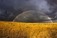 Rainbow in mist, Maasai Mara Kenya Fine-Art Print