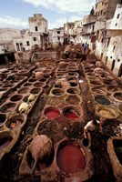Tannery Vats in the Medina, Fes, Morocco Fine-Art Print