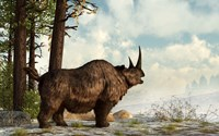 A woolly rhinoceros trudges through the snow, Pleistocene epoch Fine-Art Print