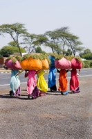 Women Carrying Loads on Road to Jodhpur, Rajasthan, India Fine-Art Print