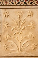 Carving detail, Taj Mahal, Agra, Uttar Pradesh, India. Fine-Art Print