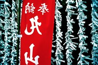 Fortune Papers at Shinto Shrine, Tokyo, Japan Fine-Art Print