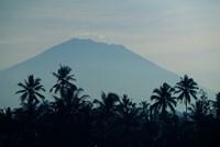 Bali, Volcano Gunung Agung, palm trees Fine-Art Print