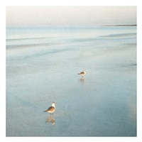 Two Birds on Beach Fine-Art Print