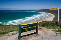 New Zealand, South Island, Tautuku Beach coastline Fine-Art Print