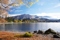 Glendhu Bay, Lake Wanaka, Otago, South Island, New Zealand Fine-Art Print