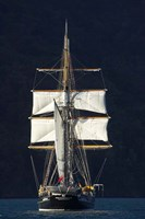 Spirit of New Zealand Tall Ship, Marlborough Sounds, South Island, New Zealand Fine-Art Print