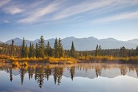 Canada, Alberta, Jasper National Park Scenic of Cottonwood Slough Fine-Art Print