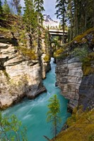 Athabasca Falls, Jasper National Park, Alberta, Canada Fine-Art Print