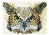 Abstract Owl Fine-Art Print