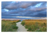 Jetties Beach Path Fine-Art Print