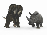 An Adult Nedoceratops Compared to a Modern Adult White Rhinoceros Fine-Art Print