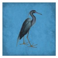 Natural Balance Fine-Art Print