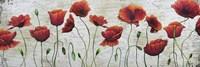 Soft Wind Blowing Fine-Art Print