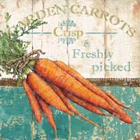 Garden Carrots Fine-Art Print