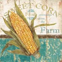 Sweet Corn Fine-Art Print