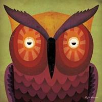 Owl WOW Fine-Art Print