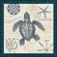 Ocean Life VI Fine-Art Print