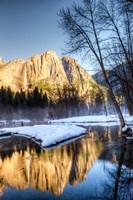 Yosemite Falls reflection in Merced River, Yosemite, California Fine-Art Print