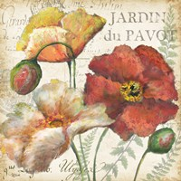 Spice Poppies Histoire Naturelle II Fine-Art Print