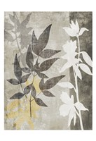 Misty 2 Fine-Art Print