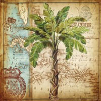 Antique Nautical Palms I Fine-Art Print