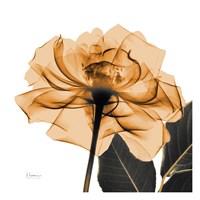Copper Rose Black Leaves Fine-Art Print