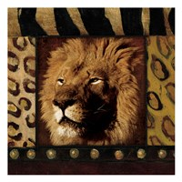 Lion with Wild Border Fine-Art Print