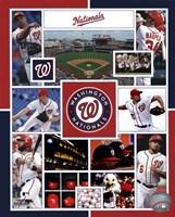 Washington Nationals 2015 Team Composite Fine-Art Print